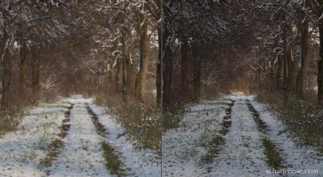 Ein 100 % Crop aus der Mitte. Hier erkennt man die schwammige Abbildungsleistung bei Offenblende Links f3.5 und 1/800s, rechts f8.0 und 1/200s.