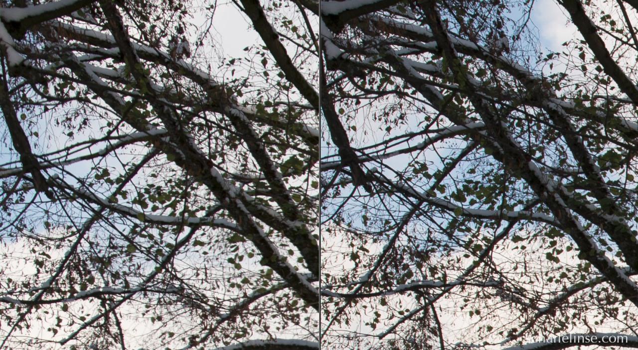 Ein 100 % Crop aus der linken oberen Bildecke (aber die schauen alle vier gleich aus ;)). Links f3.5 und 1/800s, rechts f8.0 und 1/200s.