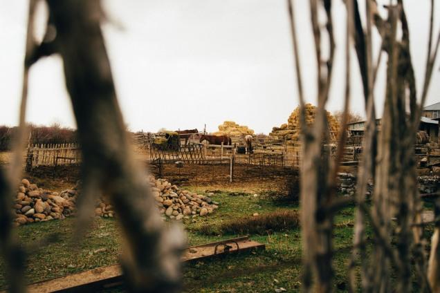 kirgisistan-1043_b