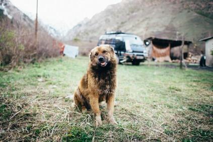 kirgisistan-650_b