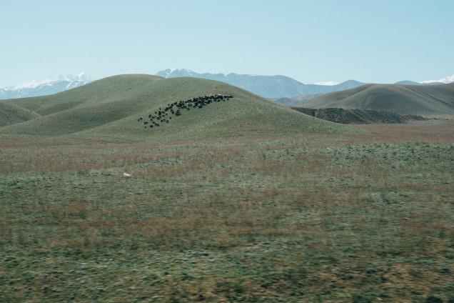 kirgisistan-765_b