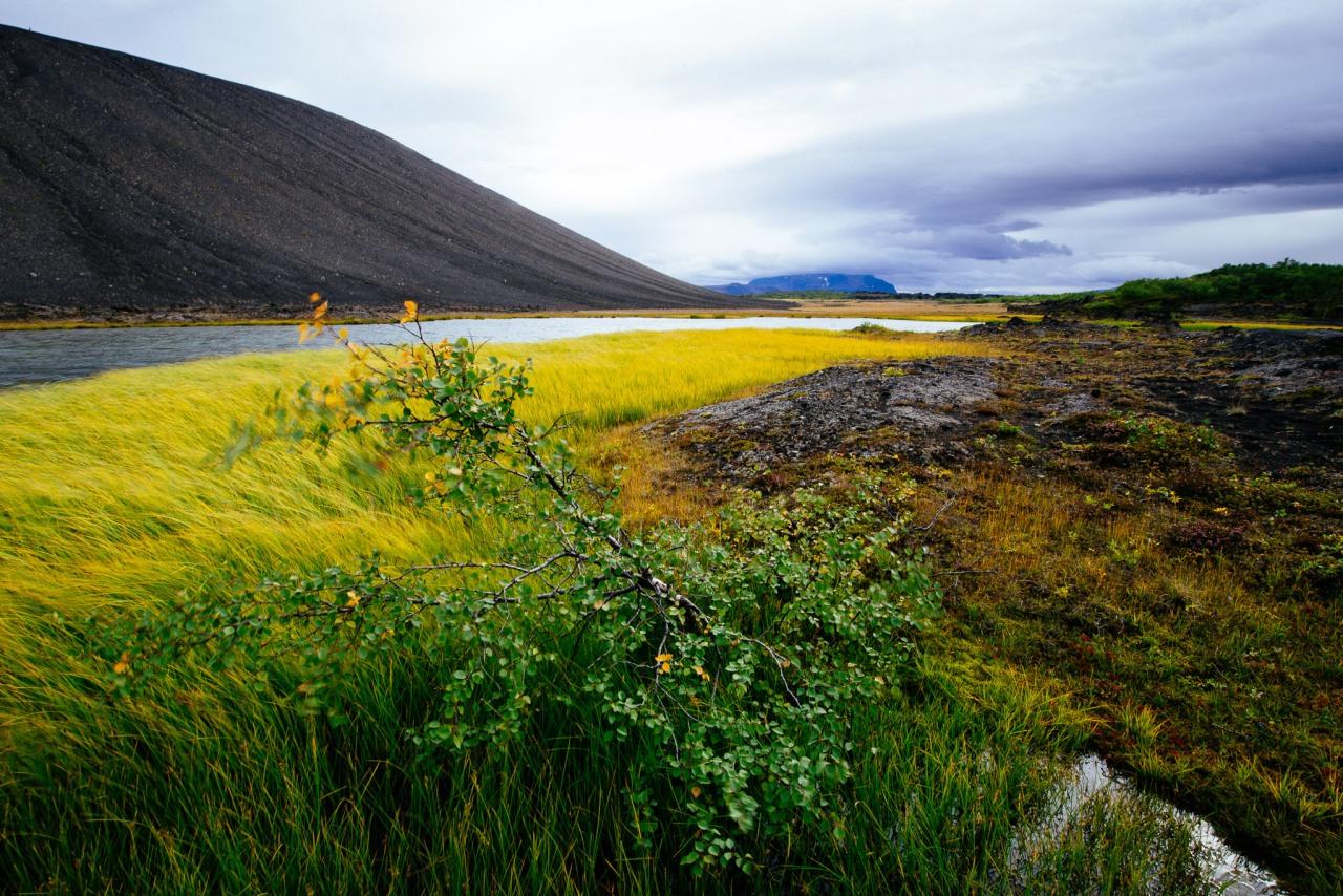 Island – Sand zwischen denZähnen
